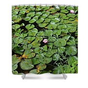 Lilly Pads Shower Curtain