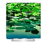 Lilly Pads Of Reelfoot Lake Shower Curtain