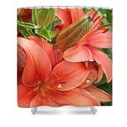 Lillys And Buds 3 Shower Curtain