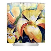 Lillys With Birds Shower Curtain
