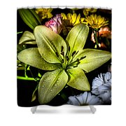 Lily Shower Curtain by Adrian Evans