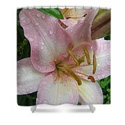 Lily After The Rain Shower Curtain