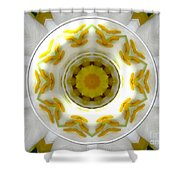 Lily And Daffodil Kaleidoscope Under Glass Shower Curtain