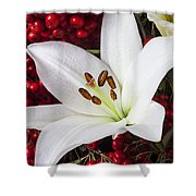 lily and Pyracantha Shower Curtain by Garry Gay