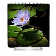 Lily And Shadow Shower Curtain