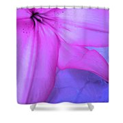 Lily - Digital Art Shower Curtain