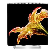 Lily Glow Shower Curtain
