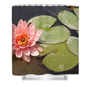 Lily Honey Shower Curtain