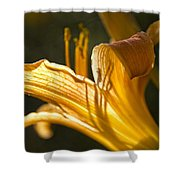 Lily In The Yard Shower Curtain