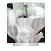 Lily Kiss Reflection Shower Curtain