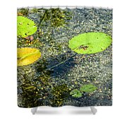 Lily Leafs On The Water Shower Curtain