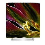 Lily Of My Dreams Shower Curtain