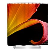 Lily Of The Field Shower Curtain
