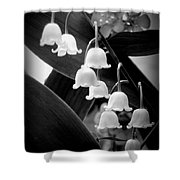 Lily Of The Valley Black And White Shower Curtain