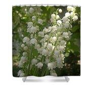 White Lily Of The Valley Bouquet Shower Curtain