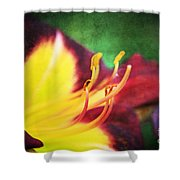 Lily On Vintage Shower Curtain