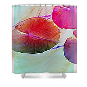 Lily Pad 1 Shower Curtain