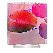 Lily Pad 3 Shower Curtain