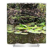 Lily Pads 1 Shower Curtain