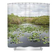 Lily Pads Floating On Water, Anhinga Shower Curtain