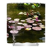 Lily Pads In The Fountain Shower Curtain