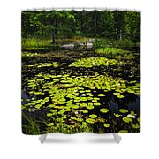 Lily Pads On Lake Shower Curtain