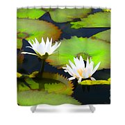 Lily Pond Bristol Rhode Island Shower Curtain