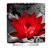 Lily Red And Koi Shower Curtain