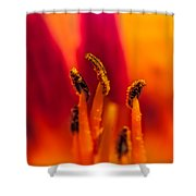 Lily Stamen Shower Curtain