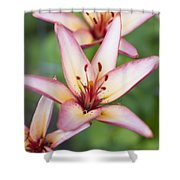 Lily One Shower Curtain