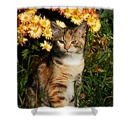 Lily With Harvest Mums Shower Curtain