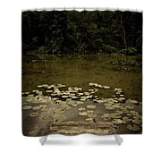 Lilypads At The Dock Shower Curtain