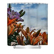 Lilys At La Fonda Shower Curtain