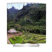 Limahuli Taro Fields In Kauai Shower Curtain