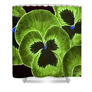 Lime Green Pansies Shower Curtain