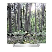 Limerick Fern Understory Shower Curtain