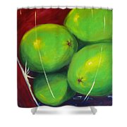 Limes In A Vase Shower Curtain