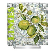 Limes On Damask Shower Curtain