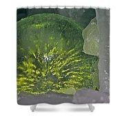 Limon Arcs Shower Curtain