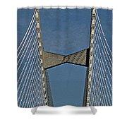 Line Design Shower Curtain