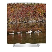 Line Of Geese On The Quinapoxet River Shower Curtain