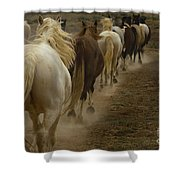 Line Of Mares Shower Curtain