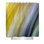 Lines And Colors - Amusement Shower Curtain