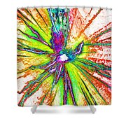 Lines Of Color Shower Curtain
