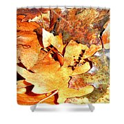 Lines Of Fall Shower Curtain