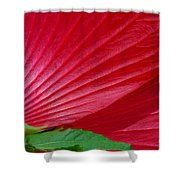 Lines Of Nature Shower Curtain