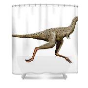 Linhenykus Dinosaur Shower Curtain