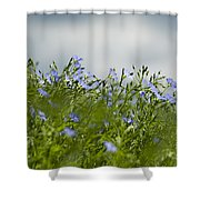Linseed Shower Curtain