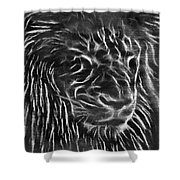 Lion - 2 Shower Curtain