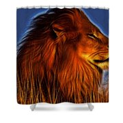 Lion - King Of Animals Shower Curtain